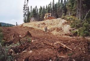 Construction d'un chemin forestier