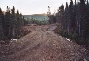 Chemin forestier terminé